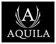 Aquila MI reporting